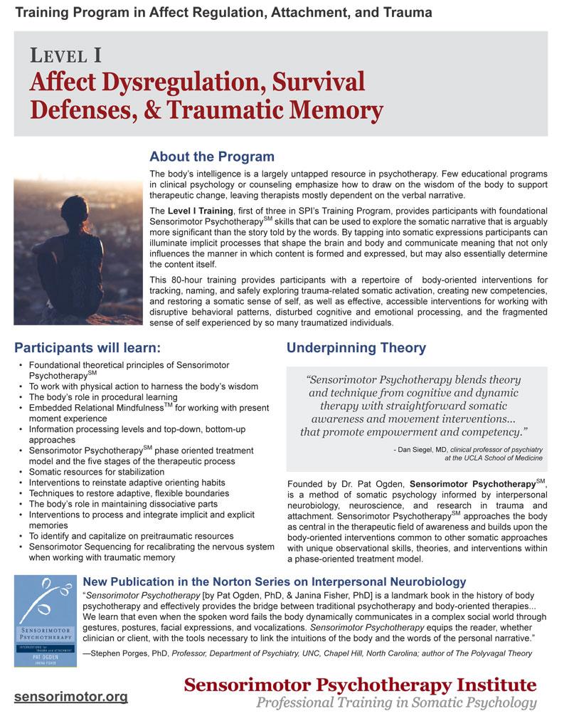 Training Program in Affect Regulation, Attachment, and Trauma